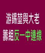 游錫?與大老籌組反一中連線 ∣台灣e新聞