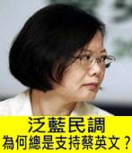 泛藍民調為何總是支持蔡英文?|台灣e新聞