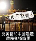 反美豬和中國農產 農民凱道嗆馬∣台灣e新聞