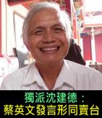 獨派沈建德:蔡英文發言形同賣台 |台灣e新聞