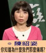 你知道為什麼我們那麼痛嗎?∣◎ 陳昭姿 ∣台灣e新聞