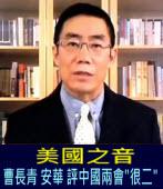 美國之音:曹長青 安華 評中國兩會『很二』∣台灣e新聞