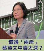慣講「兩岸」 蔡英文中毒太深?∣台灣e新聞