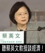 聽蔡英文教授談經濟!∣台灣e新聞