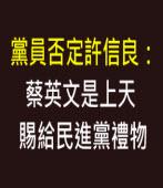 黨員否定許信良:蔡英文是上天賜給民進黨禮物 ∣台灣e新聞