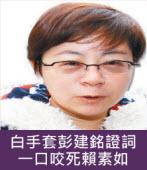 白手套彭建銘證詞 一口咬死賴素如∣台灣e新聞