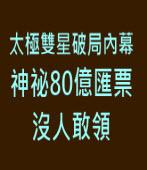 【時報周刊】獨家揭露太極雙星破局內幕 神祕80億匯票沒人敢領 ∣台灣e新聞