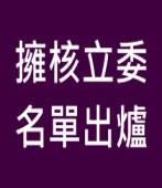 擁核立委名單出爐∣台灣e新聞