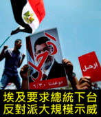 埃及要求總統下台 反對派大規模示威 - 台灣e新聞
