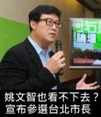 姚文智也看不下去?宣布參選台北市長 -台灣e新聞