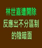 林世嘉遭開除 反應出不分區制的陰暗面 -台灣e新聞