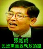 張旭成:民進黨重返執政的路-台灣e新聞