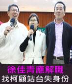 徐佳青應解職 找柯顧站台失身份-台灣e新聞