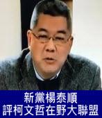 文大政研所教授楊泰順評柯文哲的在野大聯盟 -台灣e新聞