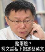 賭兩邊?柯文哲私下抱怨蔡英文-台灣e新聞