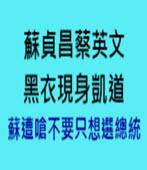 蘇貞昌蔡英文黑衣現身凱道 蘇遭嗆不要只想選總統 -台灣e新聞