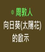 向日葵(太陽花)的啟示-◎ 周敦人-台灣e新聞