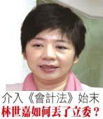 林世嘉如何丟了台聯不分區立委始末 -台灣e新聞