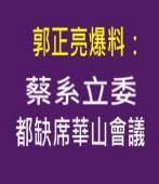 郭正亮爆料:蔡系立委都缺席華山會議 - 台灣e新聞
