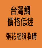 台灣鯛價格低迷 張花冠盼收購 -台灣e新聞