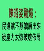 陳昭姿驚爆:民進黨不想讓扁出來 後座力太強破壞佈局- 台灣e新聞