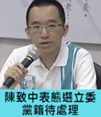 陳致中表態選立委 黨籍待處理 - 台灣e新聞