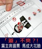 「蓋」不爽?! 黨主席選票馬成大花臉  -  台灣e新聞