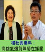 楊秋興:高雄氣爆前陳菊在抓龍-台灣e新聞