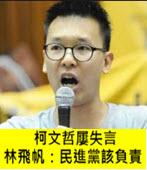 柯文哲屢失言 林飛帆:民進黨該負責-台灣e新聞