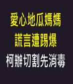 愛心地瓜媽媽謊言遭踢爆 柯辦切割先消毒 (柯支持者爆料造假 自由時報自打臉) - 台灣e新聞
