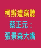 柯辦遭竊聽 蔡正元:張景森大嘴 - 台灣e新聞
