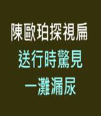 陳歐珀探視扁 送行時驚見一灘漏尿  -台灣e新聞