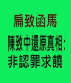扁致函馬 陳致中還原真相:非認罪求饒- 台灣e新聞
