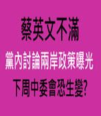 蔡英文不滿黨內討論兩岸政策曝光 下周中委會恐生變?  -台灣e新聞
