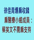 徐佳青爆扁收錢 扁醫療小組成員:蔡英文不需扁支持 - 台灣e新聞