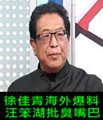 徐佳青海外爆料 汪笨湖批臭嘴巴- 台灣e新聞