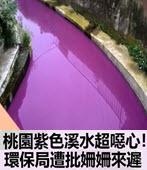 紫色溪水超噁心!環保局遭批姍姍來遲- 台灣e新聞