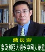曹長青:奈及利亞大選令中國人蒙羞 -台灣e新聞