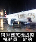 阿聯酋班機遇竊 桃勤員工幹的 - 台灣e新聞
