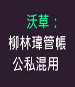 沃草:柳林瑋管帳 公私混用 -台灣e新聞