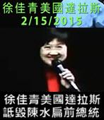 徐佳青美國達拉斯 詆毀陳水扁前總統 20150215 - 台灣e新聞