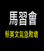 馬習會 蔡英文氣急敗壞 -台灣e新聞