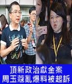 頂新政治獻金案 周玉蔻亂爆料被起訴 - 台灣e新聞