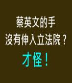 蔡英文的手沒有伸入立法院 ? 才怪 !- 台灣e新聞