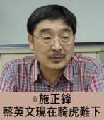 施正鋒:蔡英文現在騎虎難下 -台灣e新聞