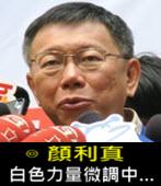 顏利真 : 白色力量微調中…- 台灣e新聞