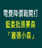 電費降價戰開打 藍委批張景森「囂張小森」-台灣e新聞