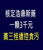 核定浩鼎新藥一顆3千元 黃三桂遭控貪污 -台灣e新聞