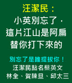汪潔民:小英別忘了,這片江山是阿扁替你打下來的- 台灣e新聞