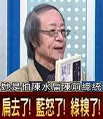 06042016[正晶限時批] 陳水扁有沒有拿錢?? 金恆煒 PK 周玉蔻 - 台灣e新聞